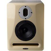 Avantone Abbey Pro – Monitor de Estudio (Unidad) 1